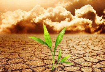 Współczesne problemy: zanieczyszczenie gleby i wyczerpywanie
