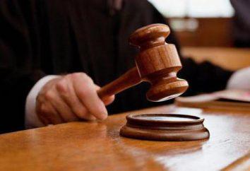 O direito dos cidadãos à proteção judicial, formas de proteção