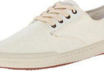Baas: le scarpe, che sono progettati per lo sport comodo corsa