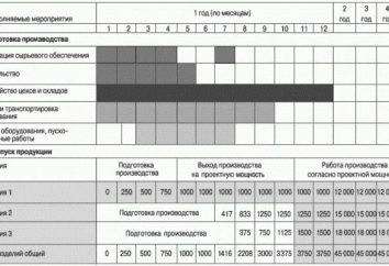 orario di lavoro (campione). Rete, calendario dei lavori per la costruzione in Excel