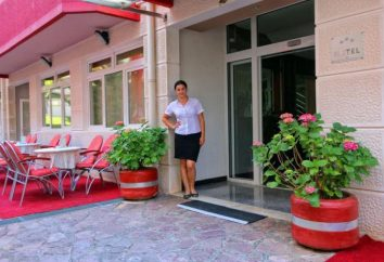 Hotel Podostrog Hotel 3 * (Budva, Montenegro): Übersicht, Zimmer und Bewertungen