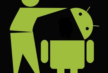 """O melhor produto de limpeza para o """"Android"""": os programas mais populares"""