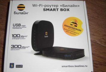 """Router """"Beeline"""" Smart Box – cechy, recenzje"""