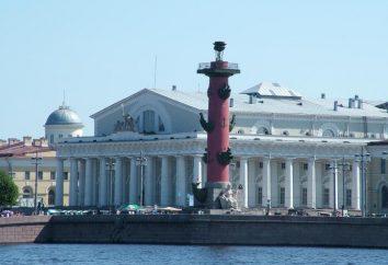Museo Naval de San Petersburgo. Pedro Museo