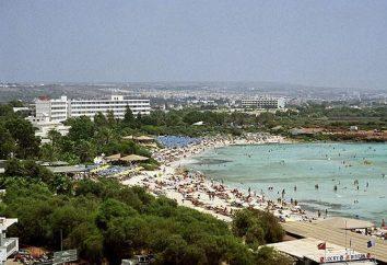 Chypre, Mouette Hôtel Apts 3 *. Critiques