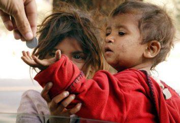 Ubóstwo – co to jest? Poziom ubóstwa. Bezwzględnego i względnego ubóstwa