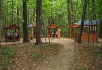 Pokrowski Park: opis i zdjęcia