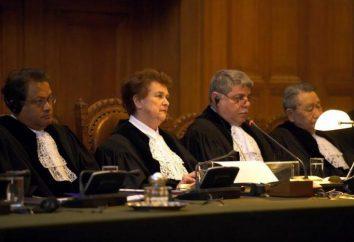 Un ordine del tribunale per recuperare il debito: un campione