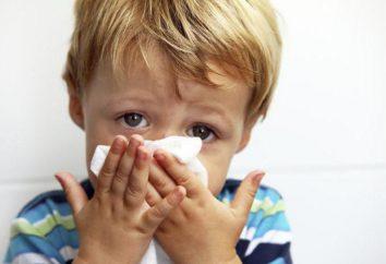 Uma criança freqüentemente sofre de doenças frias: o que fazer? Comentários dos médicos