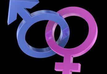 Paix dans les détails: qui a plus – les hommes ou les femmes?