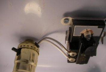 Che cosa è un termostato per incubatrice