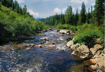 Prezerwatywa – rzeka w Rosji: opis, zdjęcia. Możliwości rekreacji