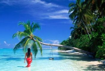 Lorsque la chaleur à l'étranger en Janvier? Resorts pour des vacances à la plage