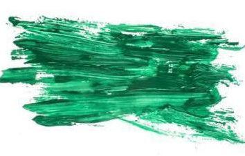 Zelenka: le lavage de cuir, le tissu et les meubles. Des moyens efficaces et recommandations
