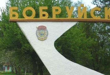 Hoteles populares Bobruisk