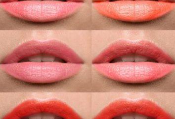 Coral del lápiz labial: características y hacer uso de los matices