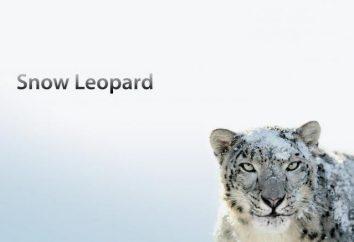 Najnowsza wersja systemu Mac OS X – Snow Leopard (Snow Leopard), 2009: instalacja, konfiguracja, porównanie
