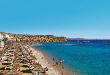 Pasadena Hotel Resort 4 * (Egitto, Sharm el-Sheikh) – foto, prezzi e recensioni