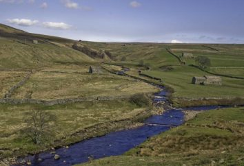 Teil des Flusses Was ist das Delta des Flusses. Golf im Unterlauf des Flusses