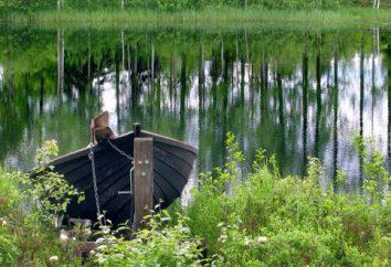 Połowów w wodach jeziora Gladyshevsky. Rezerwowane miejsca Karelia