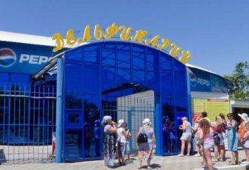 delfinario abierta en Yeisk