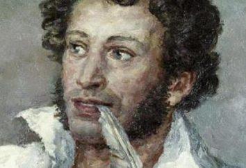 Segno dello Zodiaco di Pushkin – Gemelli