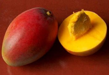 Mango (owoc): opis i zdjęcia. Gdzie rośnie mango? Korzyści i szkód z mango