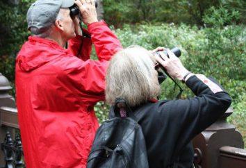 Ornitologo – chi è? Che cosa significa l'ornitologia?