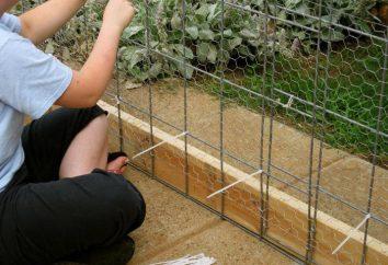 Comment tirer le petit filet filet sur la clôture: une description étape par étape des recommandations et commentaires