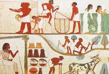 Egito antigo: a economia, suas características eo desenvolvimento de