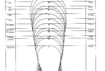 Le dimensioni delle scarpe degli Stati Uniti. Regole di selezione