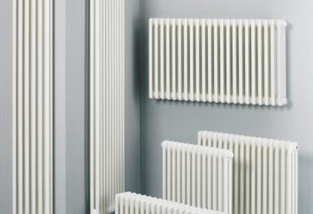 Come scegliere i radiatori tubolari in acciaio. radiatori tubolari di produzione russa
