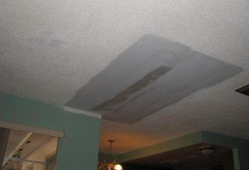 Que sellar una costura en un techo entre placas? Instrucción, tecnología