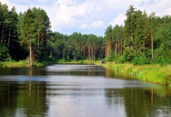 canal août. excursion Augustow Canal. canal août: Description de