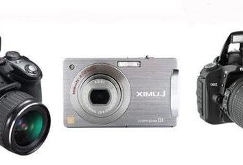 La selezione della macchina fotografica: Sintesi