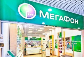 « La transition vers zéro » « Megaphone » tarifaire: description et avis