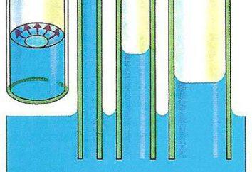 Jako efekt kapilarnego zależy od długości rury?