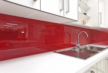 Panel de pared de la cocina. Fotos de plástico, vidrio, paneles de una pared de azulejos para la cocina