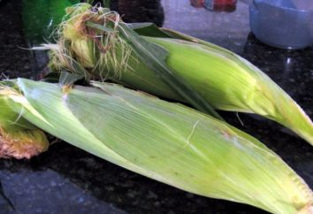 """W multivarka """"Redmond"""" gotować kukurydzę? Przepisy na Multivarki """"Redmond"""""""