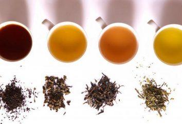 Teegetränke: gut, Rezepte