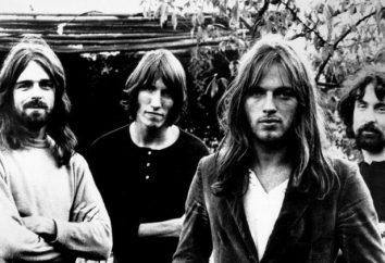 """A banda de rock britânica lendário """"Pink Floyd"""": história e decadência"""