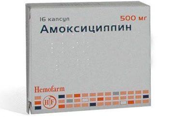 """""""Amoxicilina"""" instruções Crianças antibióticos para uso e feedback"""