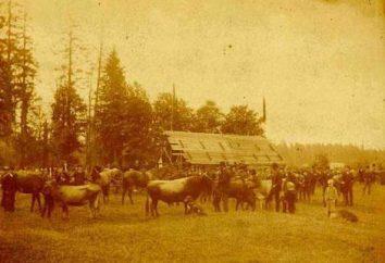 La première exposition agricole en Russie qui et quand il a été organisé et exécuté?