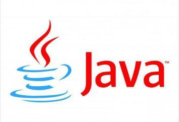 Nie można zainstalować Java: co robić? Jak zainstalować na Ubuntu?