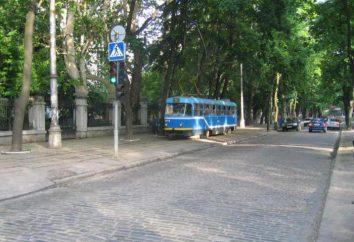 """Plage """"Joy"""" Odessa: avis de service"""