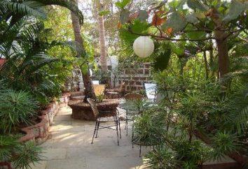 Hotel 3 *: Alidia Beach Resort, India. Foto e commenti