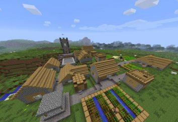 """¿Cómo construir una ciudad en el """"Maynkraft"""" y hacer que el portal de"""