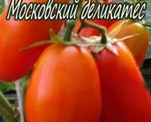 Moskwa pomidor przysmak: opis odmiany