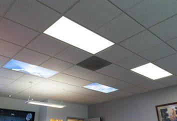 Painéis de luzes de teto: visão geral, recursos de instalação e visualizações