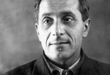 """Zoshchenko """"Case History"""". Resumo do """"Histories"""" Zoshchenko"""